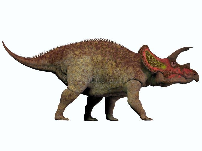 Triceratops na bielu ilustracja wektor