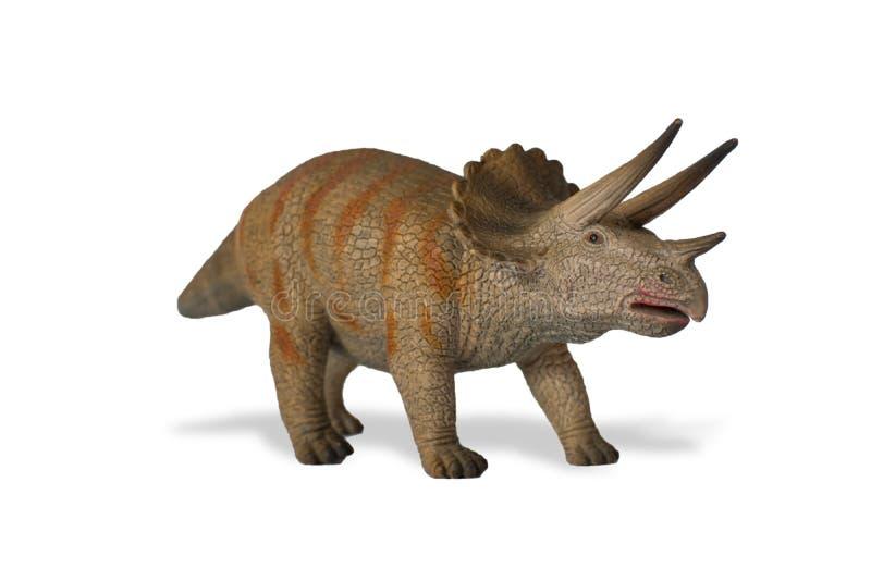 Triceratops på vit bakgrund arkivfoto
