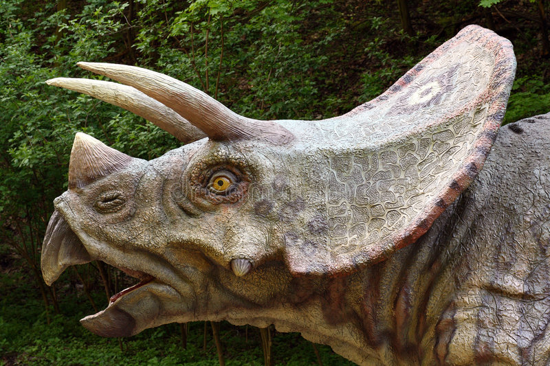 Triceratops Prorsus. Model of Triceratops Prorsus dinosaur in a park royalty free stock images