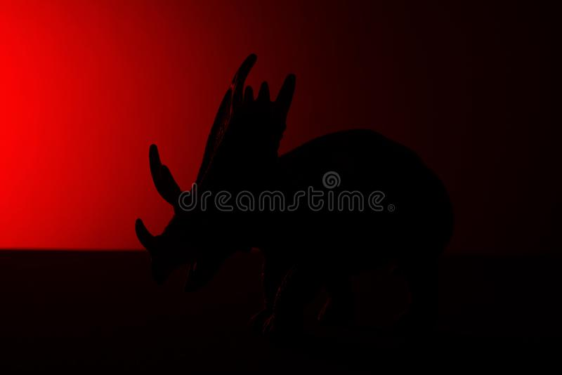 Triceratops shadow with red light. In dark royalty free stock image