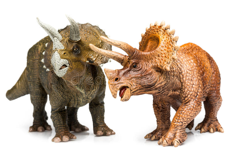 Triceratops. Two Triceratops figurines on white background stock images