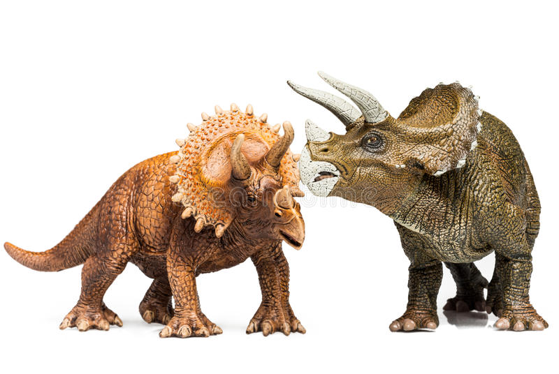 Triceratops. Two Triceratops figurines on white background royalty free stock photos