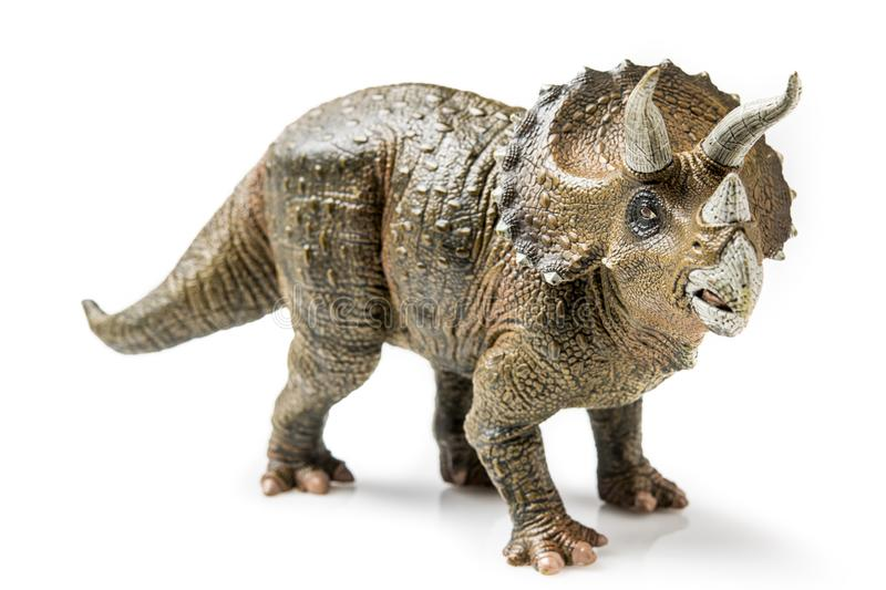 Triceratops on white. Triceratops figurine on white background royalty free stock image