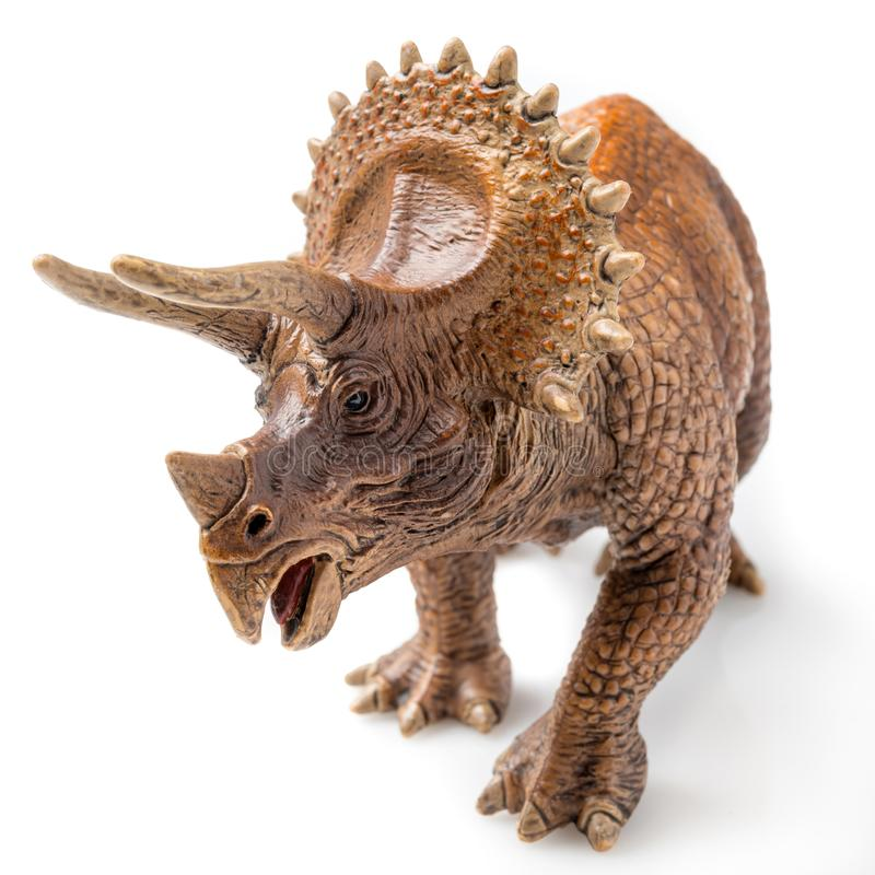 Triceratops on white. Triceratops figurine on white background stock photo