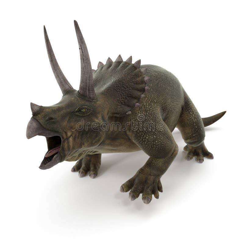 Triceratopsdinosaurie på vit illustration 3d royaltyfri illustrationer
