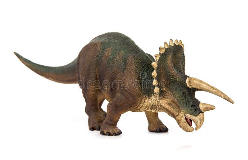 Triceratopsdinosaurieherbivor royaltyfri bild
