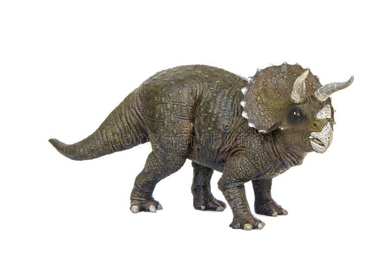 Triceratopsdinosaurier stockfoto