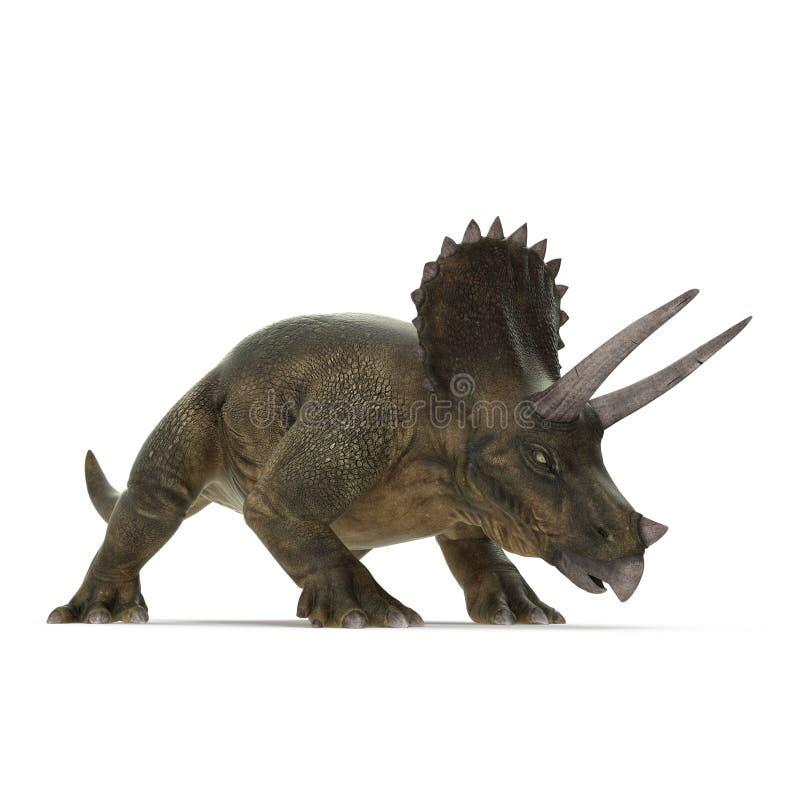 Triceratopsdinosaurier auf Weiß Abbildung 3D stock abbildung