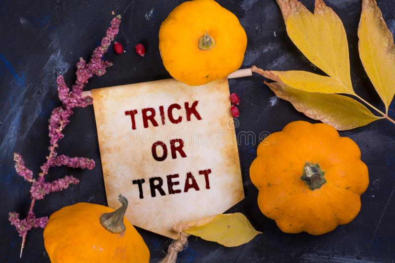 Trick or treat. Banner with pumpkin and autumn leaf and dried flower on black background royalty free stock photography