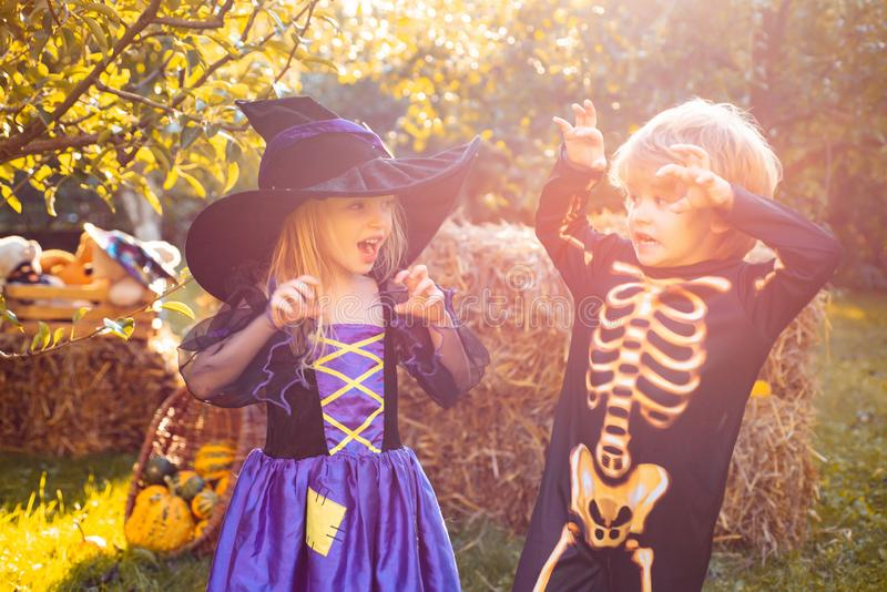 Trick or Treat. Halloween children enjoying in the autumn park on field. Surprised group little zombie in Halloween stock image
