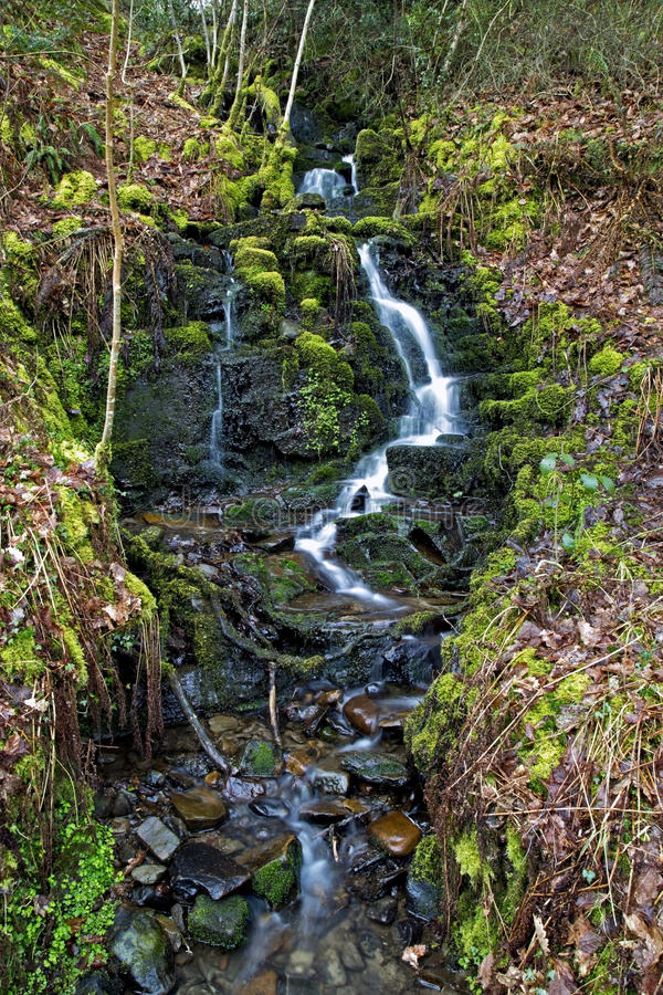 Trickle of water over moss and rocks at Melincourt waterfalls. Small trickle of water over moss and rocks at Melincourt waterfalls, Resolven, Vale of Neath stock photography