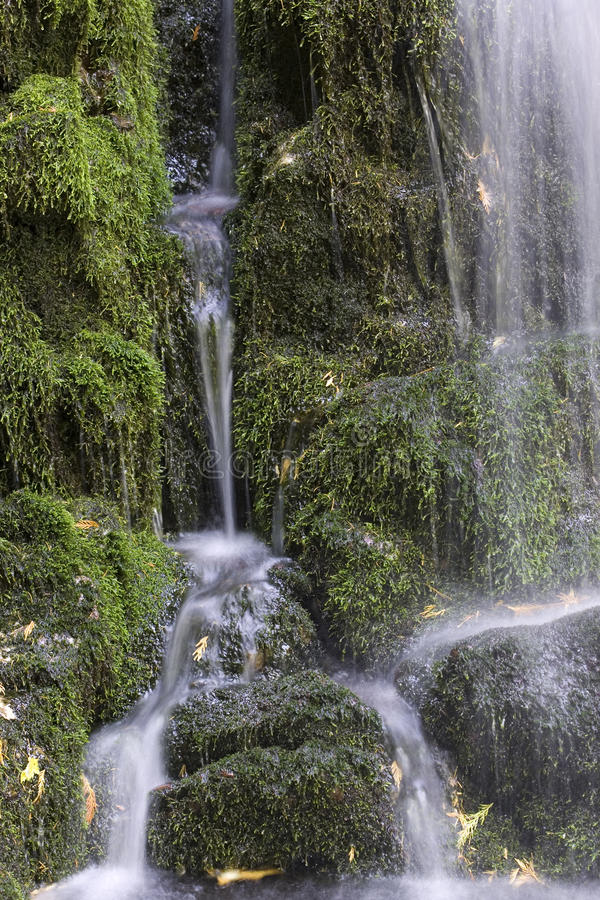 Trickling water over moss covered rocks. stock image