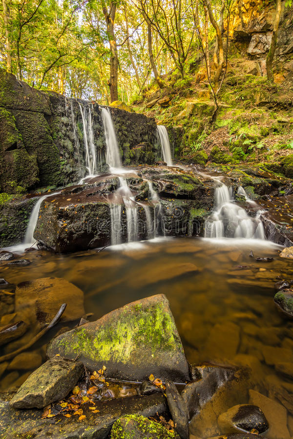 Trickling Waterfall In Peaceful Secluded Woodland Forest. A small trickling waterfall called Jepson's Clough in a secluded forest in the Rivington Hills. Taken stock photography