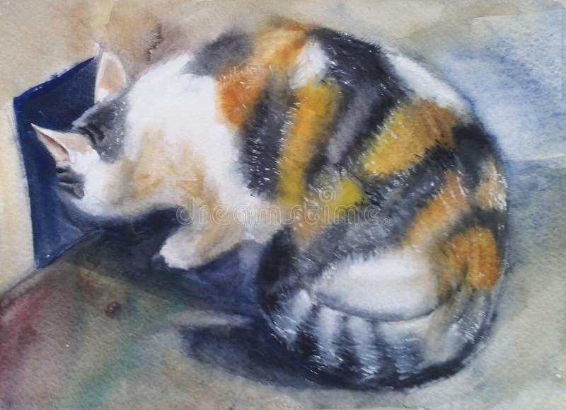 Tricolor katt som kikar till vänstersidan royaltyfri foto