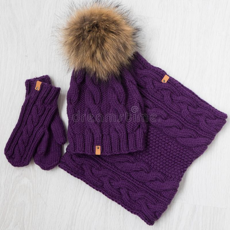 Tricotti il cappello, la sciarpa e i nittens dell'inverno immagine stock