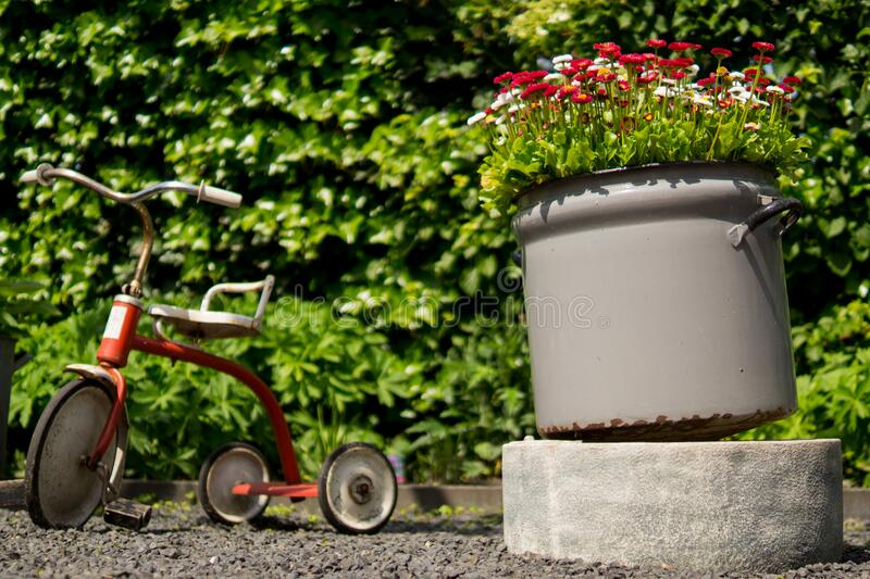 Tricycle In Garden Free Public Domain Cc0 Image