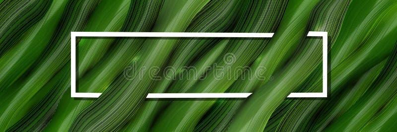 Tridimensional, vector, fondo del verde 3d de ramas verdes marco para el texto con las hojas tropicales en el estilo del realismo ilustración del vector