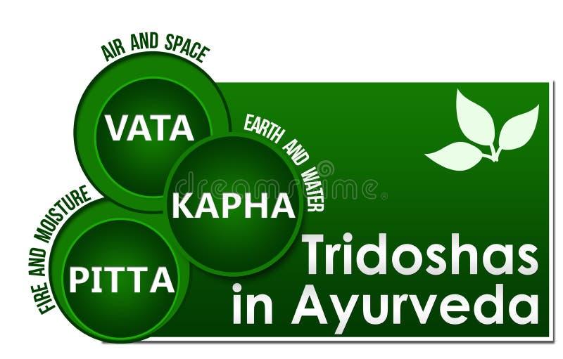 Tridoshas In Ayurveda Three Circles. Conceptual image of Tridoshas in ayurveda with related information stock illustration