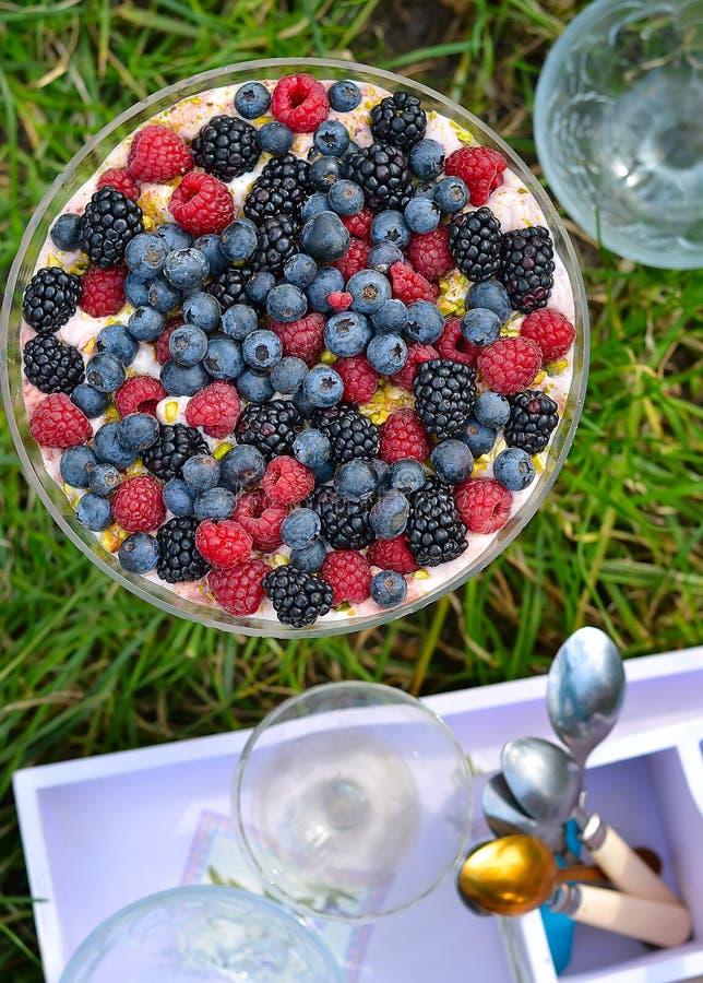 trifle royaltyfri bild