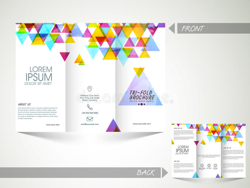 Trifold Brochure Template Or Flyer For Business Stock - State brochure template