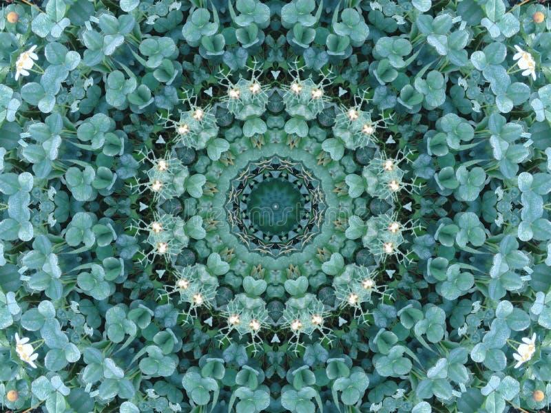 Trifolium meadows circle royalty free stock photography