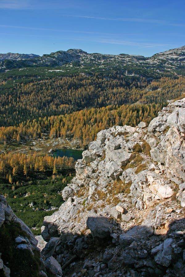 Triglavnp de herfstlariksen Dolina Triglavskih Jezer royalty-vrije stock foto
