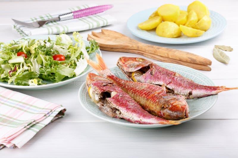 Triglia cotta servita con le patate e l'insalata verde bollite fotografia stock libera da diritti