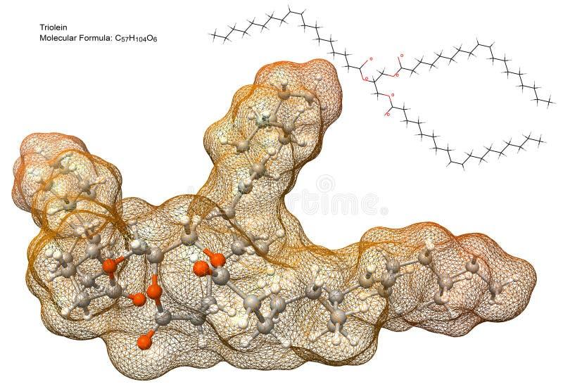 Triglyceride molekuła ilustracja wektor