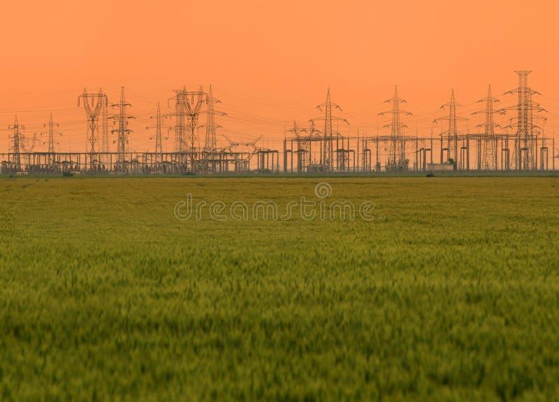 Trigo & linhas eléctricas imagem de stock