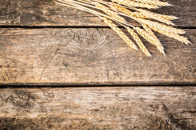 Trigo do outono na textura de madeira velha imagem de stock royalty free