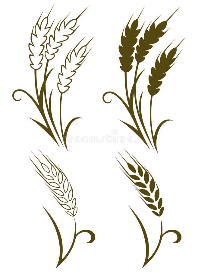 Trigo e centeio ilustração royalty free