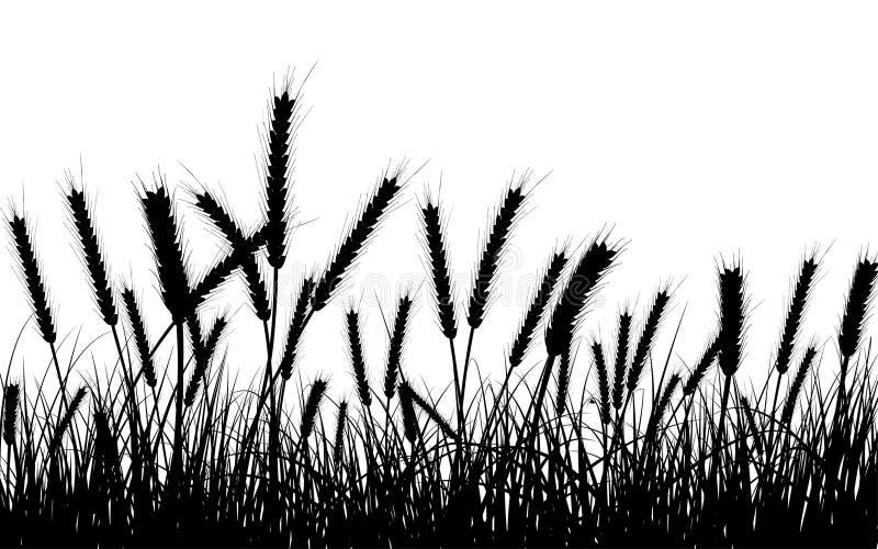 Trigo e hierba stock de ilustración