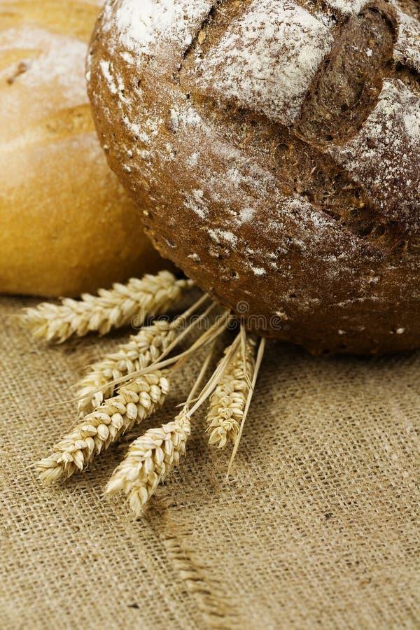 Trigo e pão fotos de stock royalty free