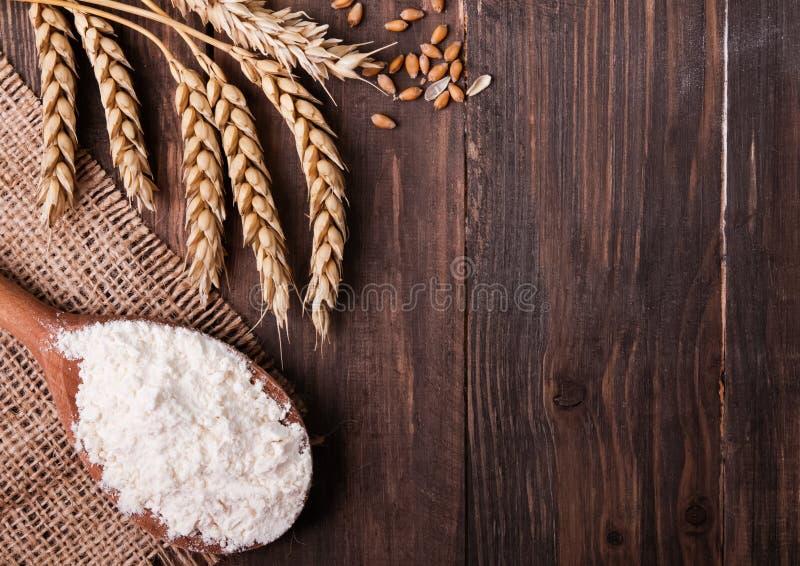 Trigo, farinha e pão foto de stock