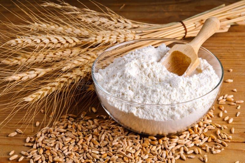 Trigo, grão e farinha imagem de stock royalty free