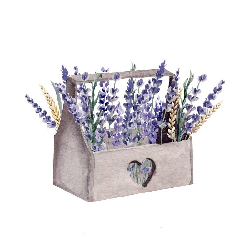 Trigo pintado a mano del cereal de la caja de Provence de la acuarela de la lavanda stock de ilustración