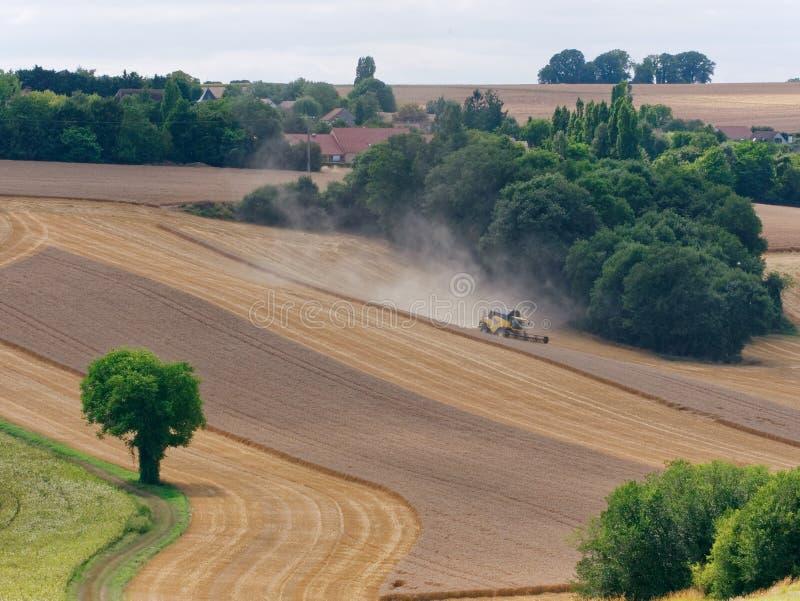 Trigo que cosecha Francia foto de archivo