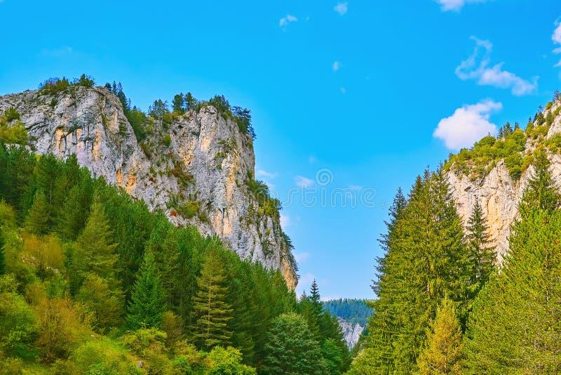 Rhodope Mountains in Bulgaria. Trigrad Gorge, Rhodope Mountains in Southern Bulgaria, Southeastern Europe royalty free stock photo