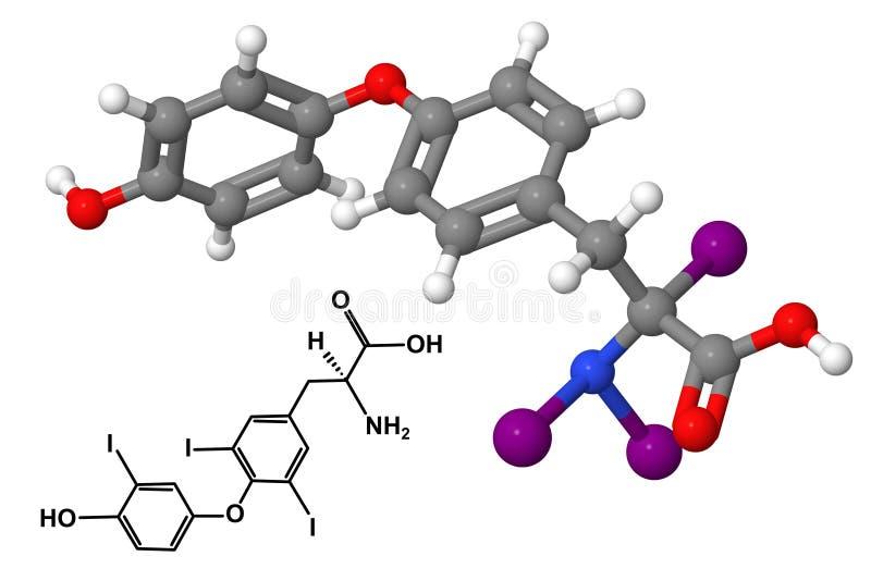 Triiodothyronine stock illustratie