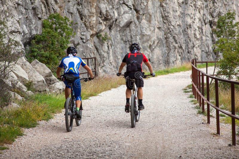 Trilha da equitação do ciclista do Mountain bike foto de stock