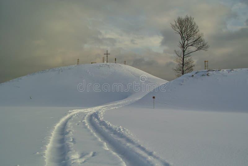 Download Trilha da neve imagem de stock. Imagem de coldness, congelado - 12810499