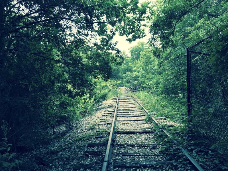 Trilha de estrada de ferro abandonada fotografia de stock