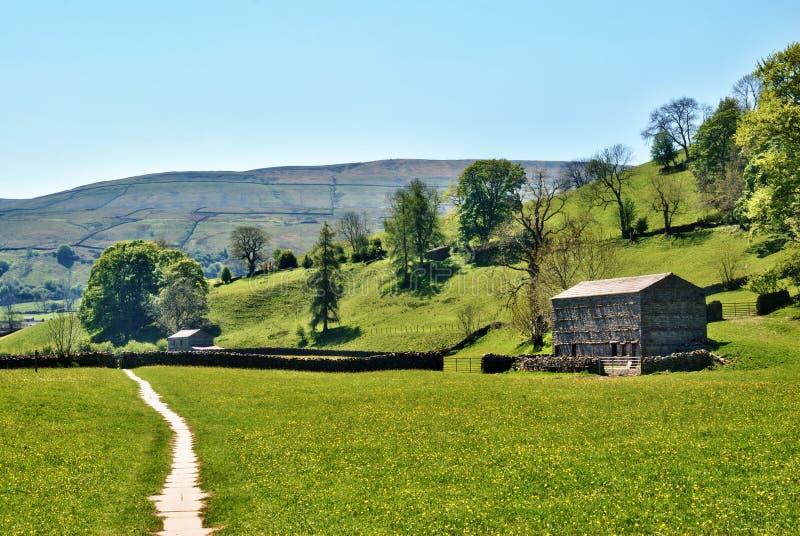 Trilha de exploração agrícola remota em Dales de Yorkshire fotos de stock