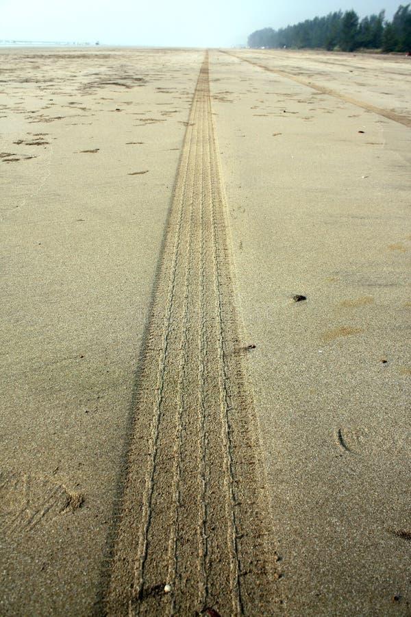Trilha do pneu da praia fotografia de stock royalty free