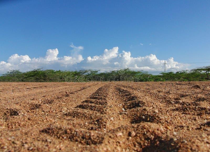 Trilha do pneu no meio do deserto colombiano imagens de stock royalty free
