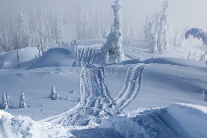 Trilha do Snowmobile fotos de stock royalty free