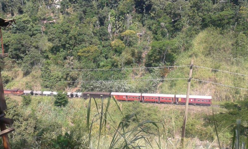 Trilha Railway de Badulla fotos de stock royalty free