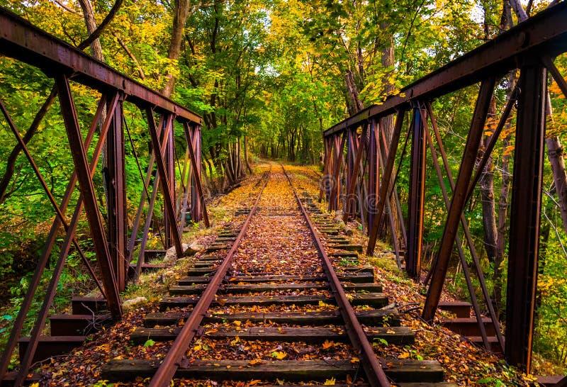 Trilhas de estrada de ferro cobertas nas folhas de outono, perto de Stewartstown, pena fotos de stock