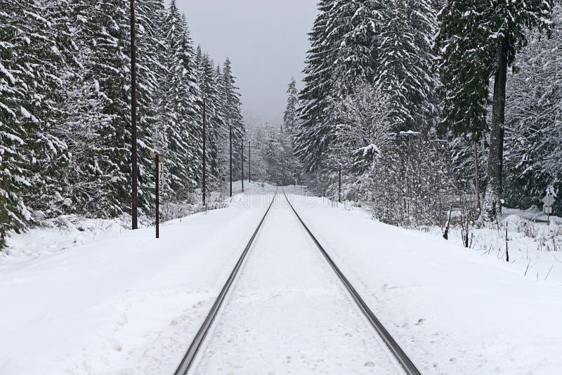Trilhas de estrada de ferro no inverno fotografia de stock royalty free