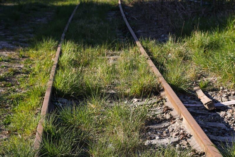 Trilhas de estrada de ferro abandonadas com grama verde e erva daninha fotografia de stock royalty free